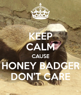 keep-calm-cause-honey-badger-don-t-care-9